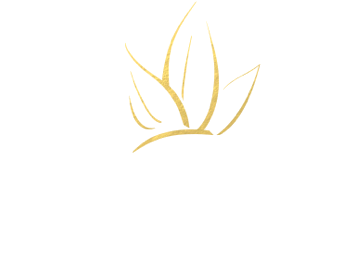 Agave Healing Oil